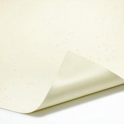 PVC Teichfolie Sand, 1.00 mm