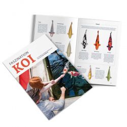Koi-Varietäten Broschüre Faszination Koi